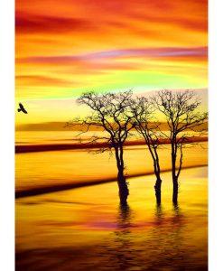 Opal Sunrise 9445 Mut der Morgensonne (Courage of the Morning Sun) 4-ply sock / glove knitting yarn