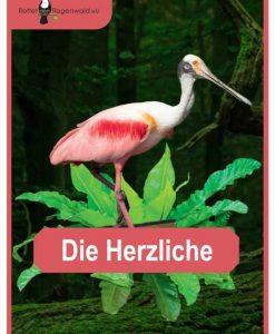 Opal Rainforest 16 XVI 9900 Die Herzliche (The Hearty One) 4-ply sock / glove knitting yarn