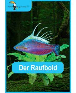 Opal Rainforest 16 XVI 9902 Der Raufbold (The Brawler) 4-ply sock / glove knitting yarn