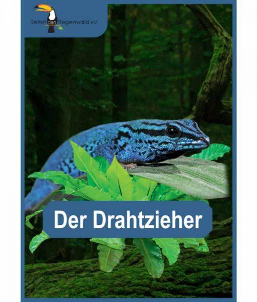 Opal Rainforest 16 XVI 9903 Der Drahtzieher (The Mastermind) 4-ply sock / glove knitting yarn