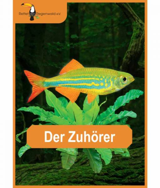 Opal Rainforest 16 XVI 9907 Der Zuhörer (The Listener) 4-ply sock / glove knitting yarn