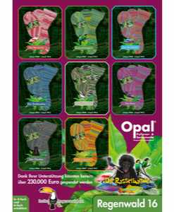Opal Rainforest 16 (XVI) 4-ply